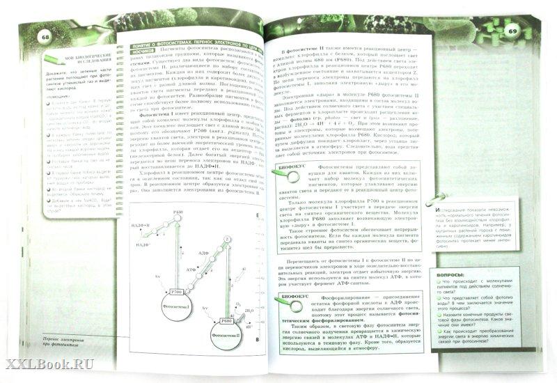 Большой учебник по французскому языку 6 класс синяя птица читать
