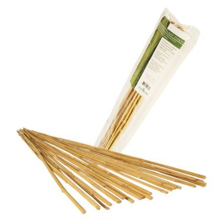 Hydrofarm Hgbb6 6 Natural Bamboo Stake Pack Of 25 400 x 300