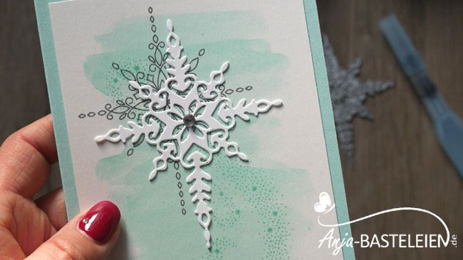 "Produktpaket ""Weihnachtsstern"" #143509 - Star of Light"