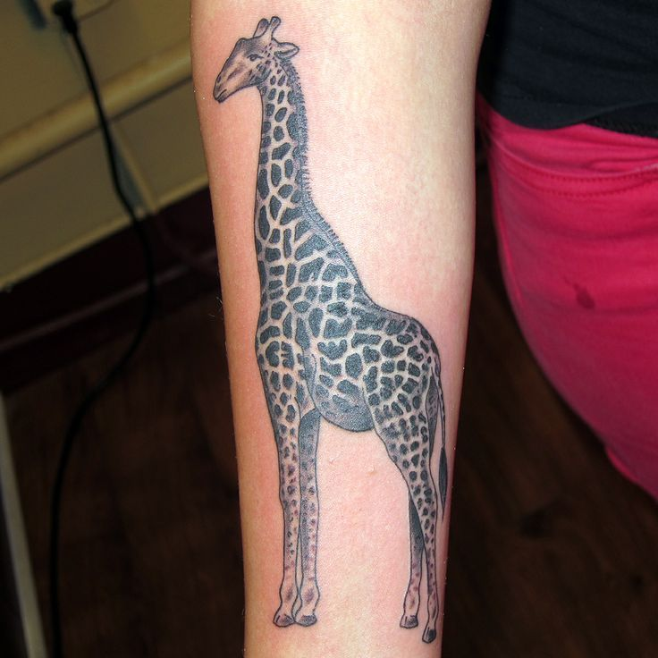 Black and grey giraffe tattoo by jon reed all saints