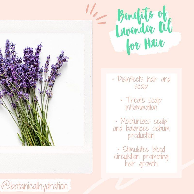 Pin On Natural Ingredients For Healthy Hair