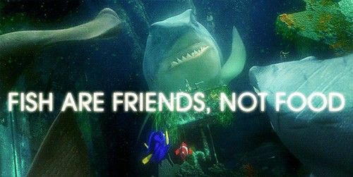 Freshmen are friends, not food