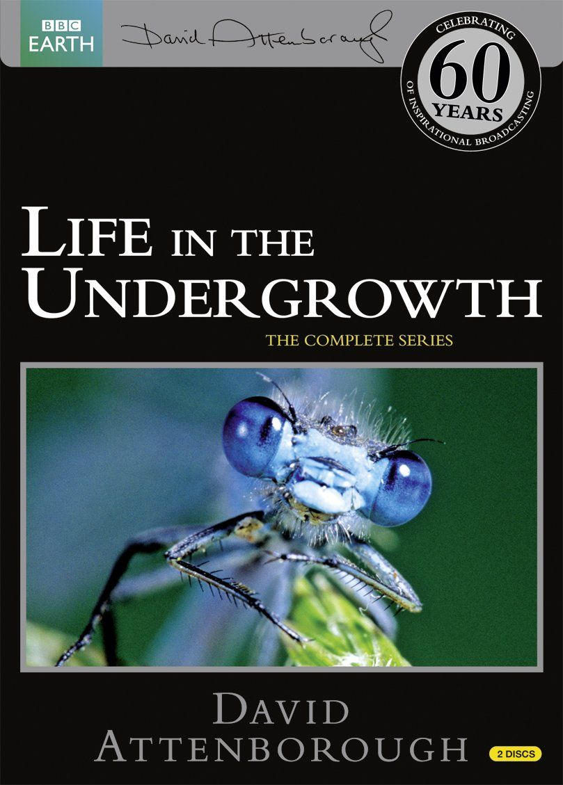 Life in the Undergrowth Repackaged Reino Unido DVD