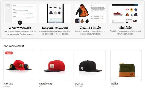 Online shops WordPress theme