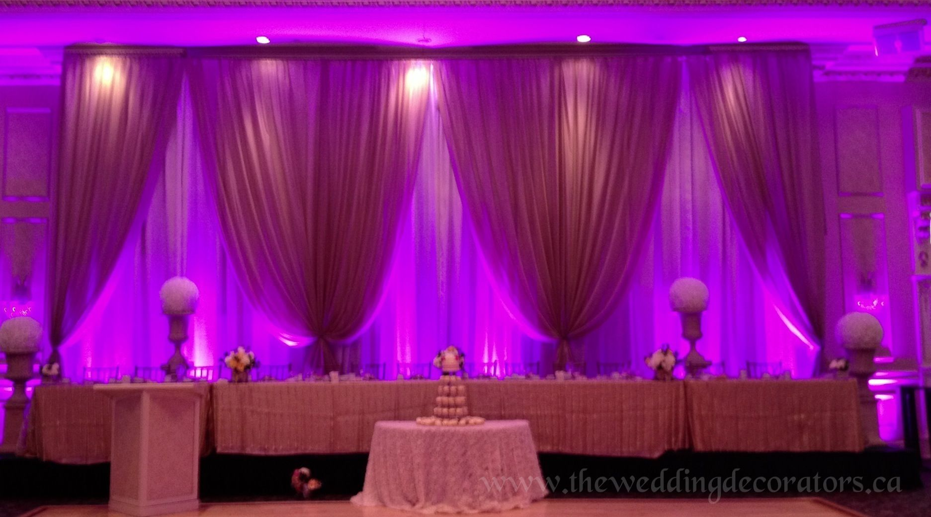 Debut Stage Backdrop Wedding backdro...