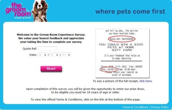 My Groom Room Experience Survey Appreciation Quotes Surveys Customer Survey