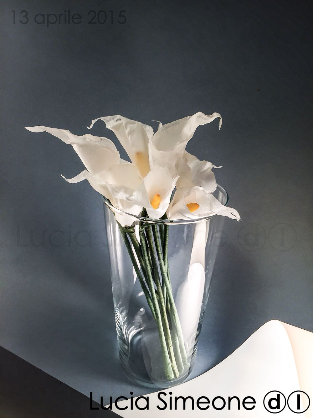 Calla. Painted wafer paper flowers di Lucia Simeone ⓓⓛ  #waferpaper #waferpaperflower #luciasimeone #fioriostia