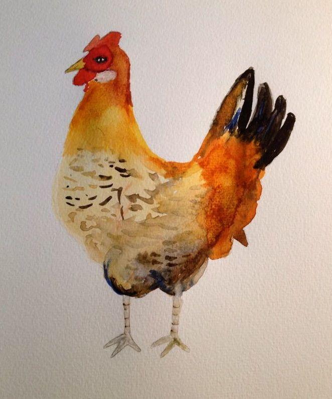 Poule aquarelle / Watercolor chicken