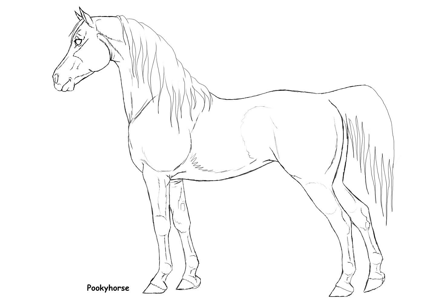Artist Unknown Horse Coloring Pages Horse Coloring Horses [ 1008 x 1440 Pixel ]