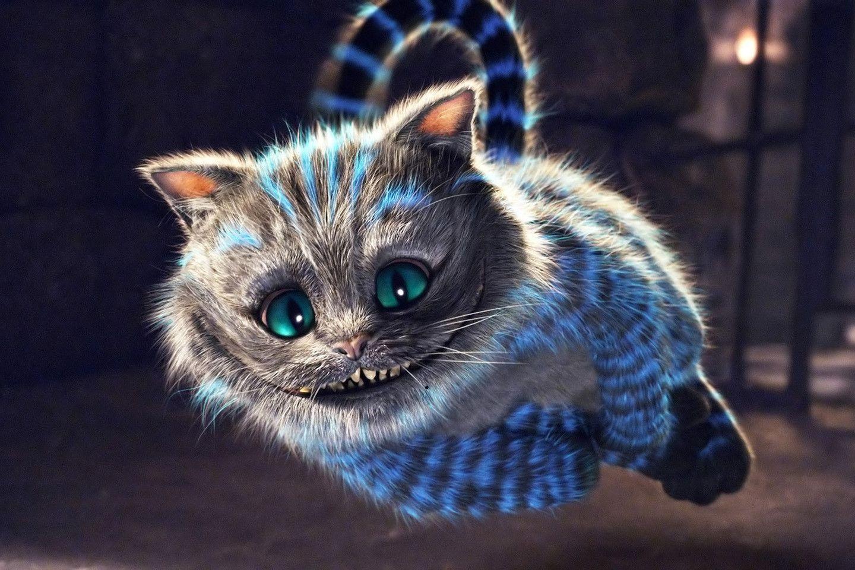 Cool Wallpaper Cat Mystical - f3030430f98c59c6a8a0754a9ac145c3  Trends_41469 .jpg