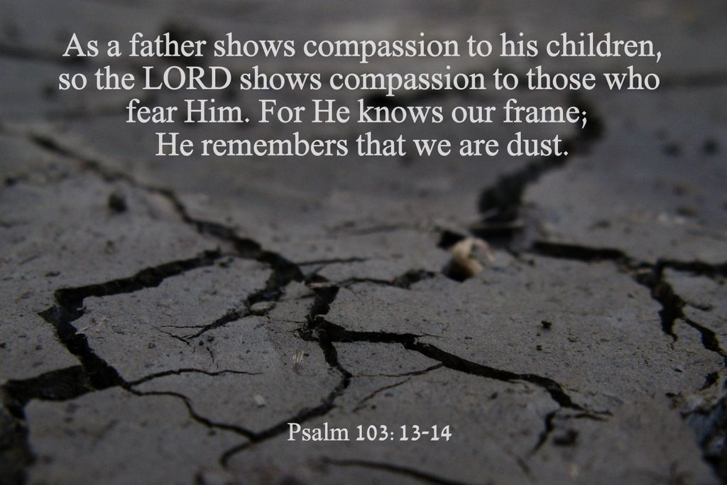 God has compassion, He remembers that we are dust. | Anxiety, Fear ...