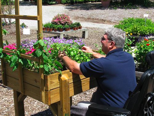 wheelchair accessible garden Sensory garden, Healing garden