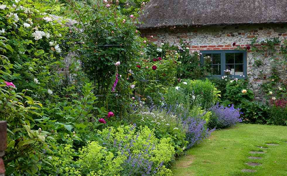 a quintessential english cottage garden brings to mind romantic planting billowing with old fashioned - Cottage Garden