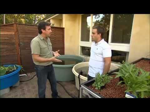 Aquaponics Australia and Solar Energy #aquaponics #australia #energy #solar # #aquaponics