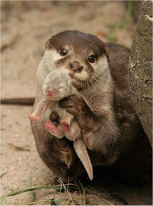 mamá posando con su hijito.