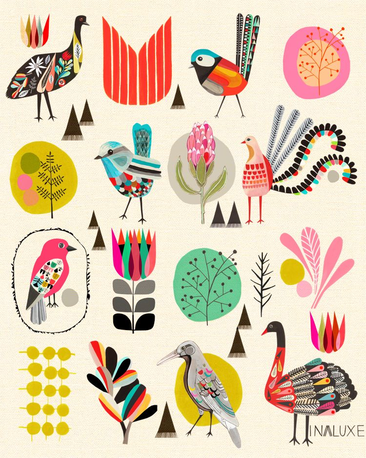 The Birds of Australia wrapping paper from Inaluxe