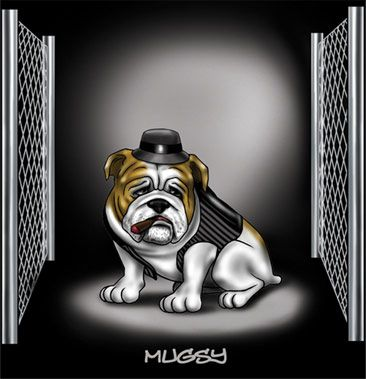 Homie Dogs Made Dog He Was A Bull Dog Of Respect In The