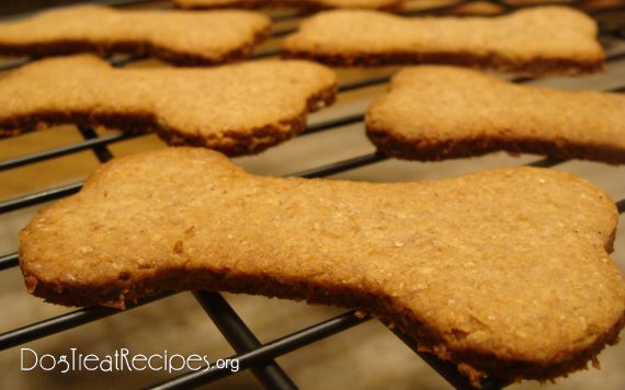 Crunchy Honey Cinnamon Dog Biscuits Recipe Homemade Dog Treats I