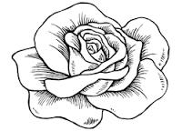 Afbeeldingsresultaat Voor Roos Kleurplaat Ova Pinterest