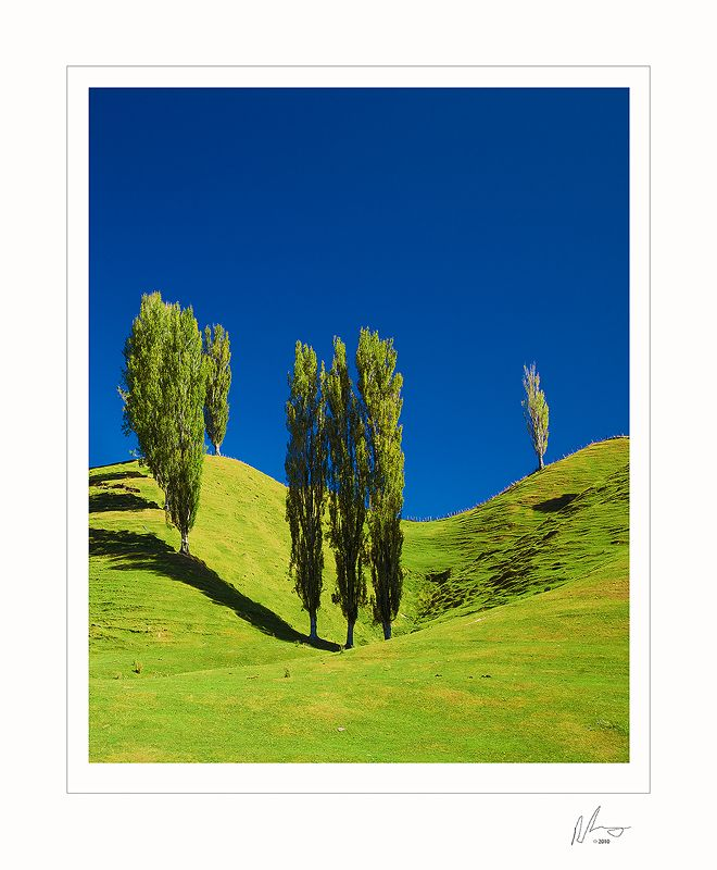 North Island New Zealand Beautiful Places We Have Visited Pinterest Homeland And
