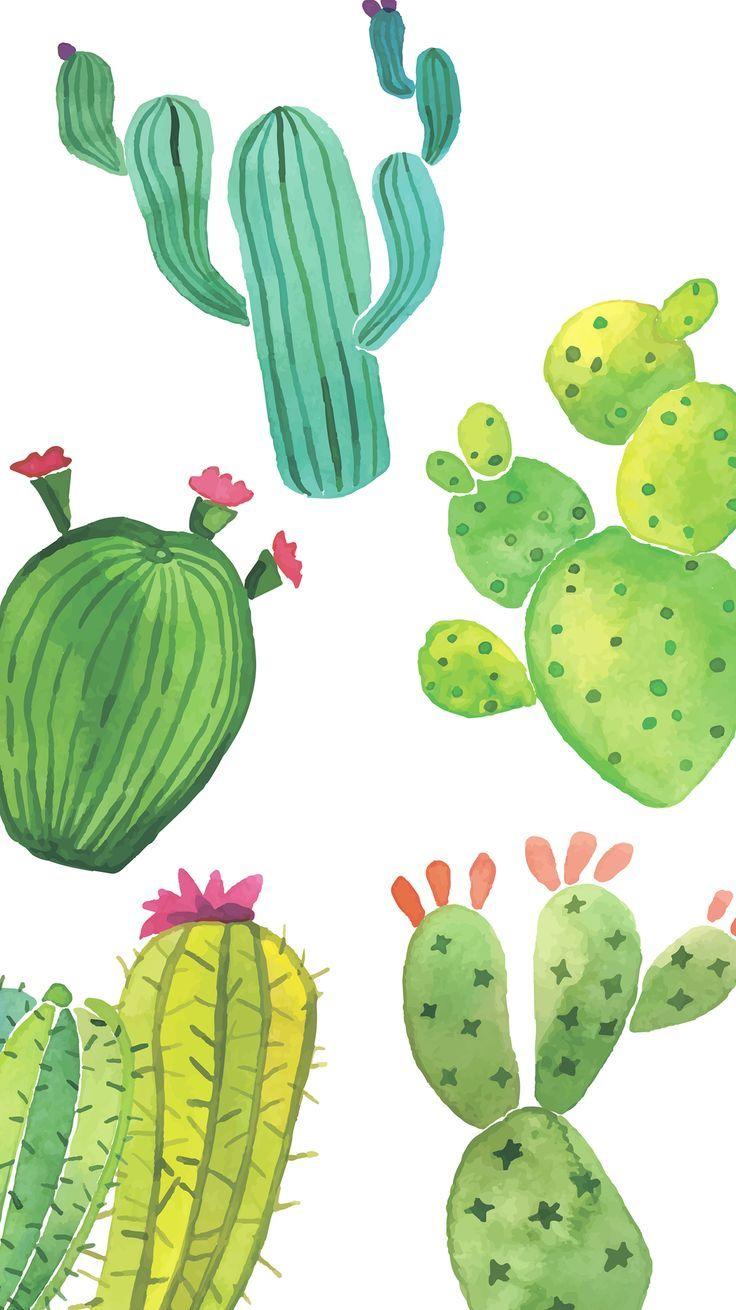 Cute Cactus Wallpaper Cactus Backgrounds Watercolor Cactus Iphone Wallpaper