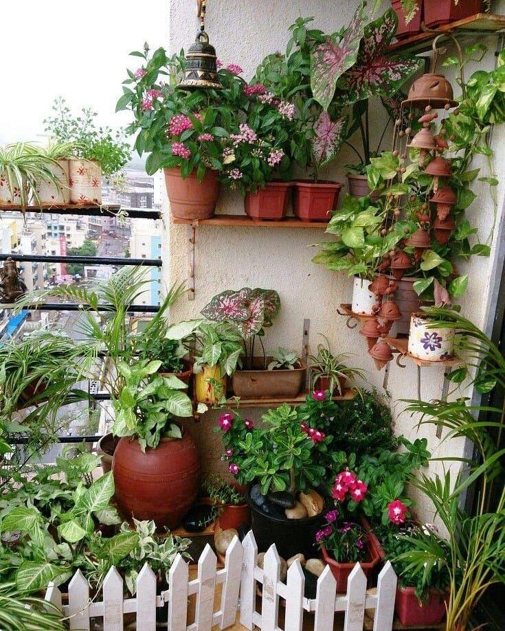 "Photo of Garden Market Online on Instagram: ""Beautiful Balcony Garden Idea . . . . . #mygardeningstories #garden #gardens #gardenlife #gardener #gardenlove #gardening…"""