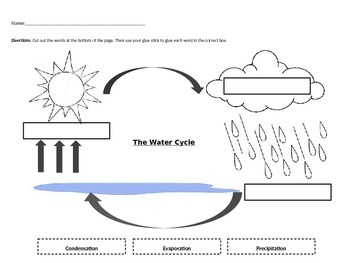 Pin on water cycle