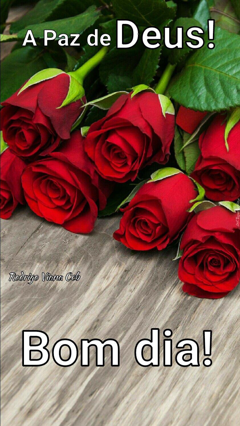 Amem Bom Dia Com Imagens Mensagens De Bom Dia Citacoes