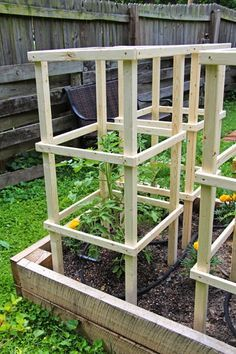 Some Like A Project Wooden Tomato Cages Peggy Gardening Tomato