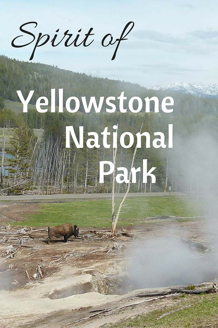 essay on yellowstone national park