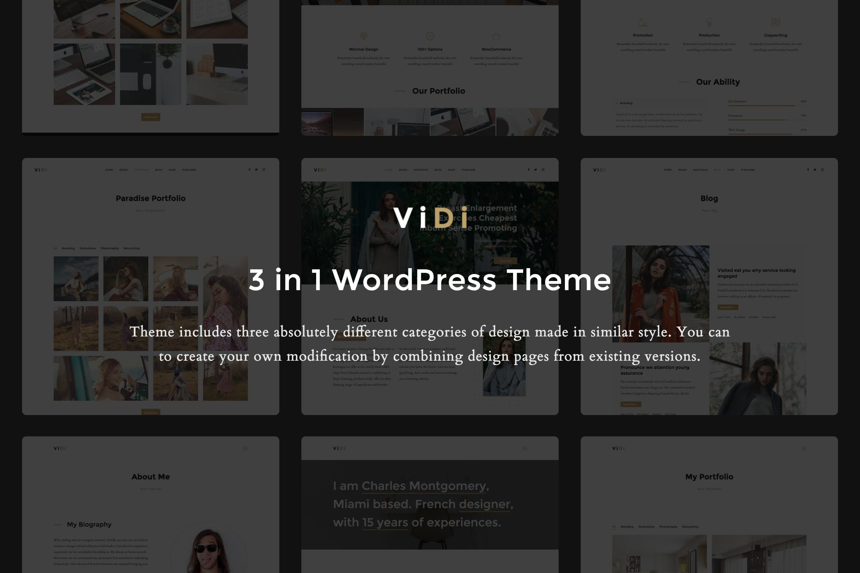 ViDi 3 in 1 Creative WordPress Theme Themes