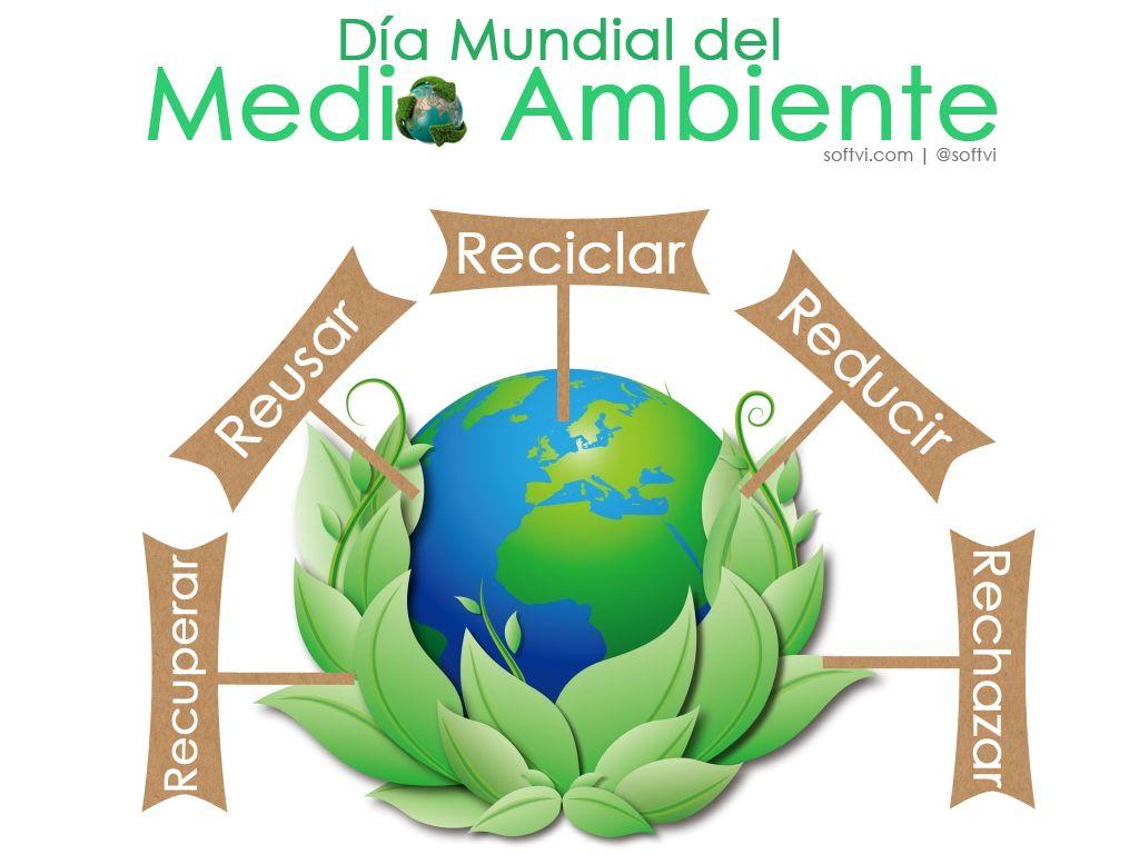 Y tu que haces para cuidar nuestro planeta? | Dia mundial del medio ambiente, Dia del medio ambiente, Dia mundial del ambiente