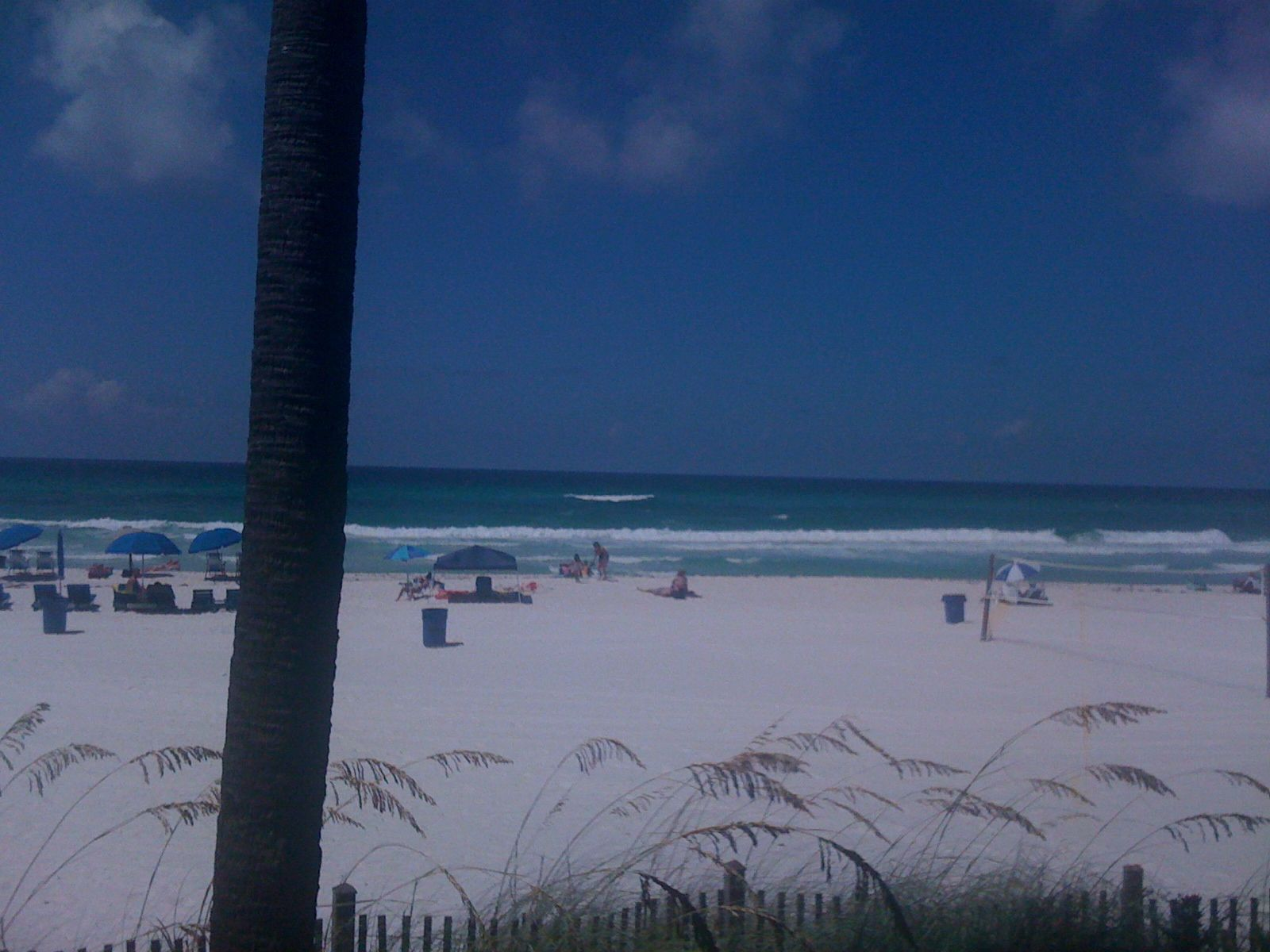 sitting at schooners pcb any beach will do travel rh pinterest com