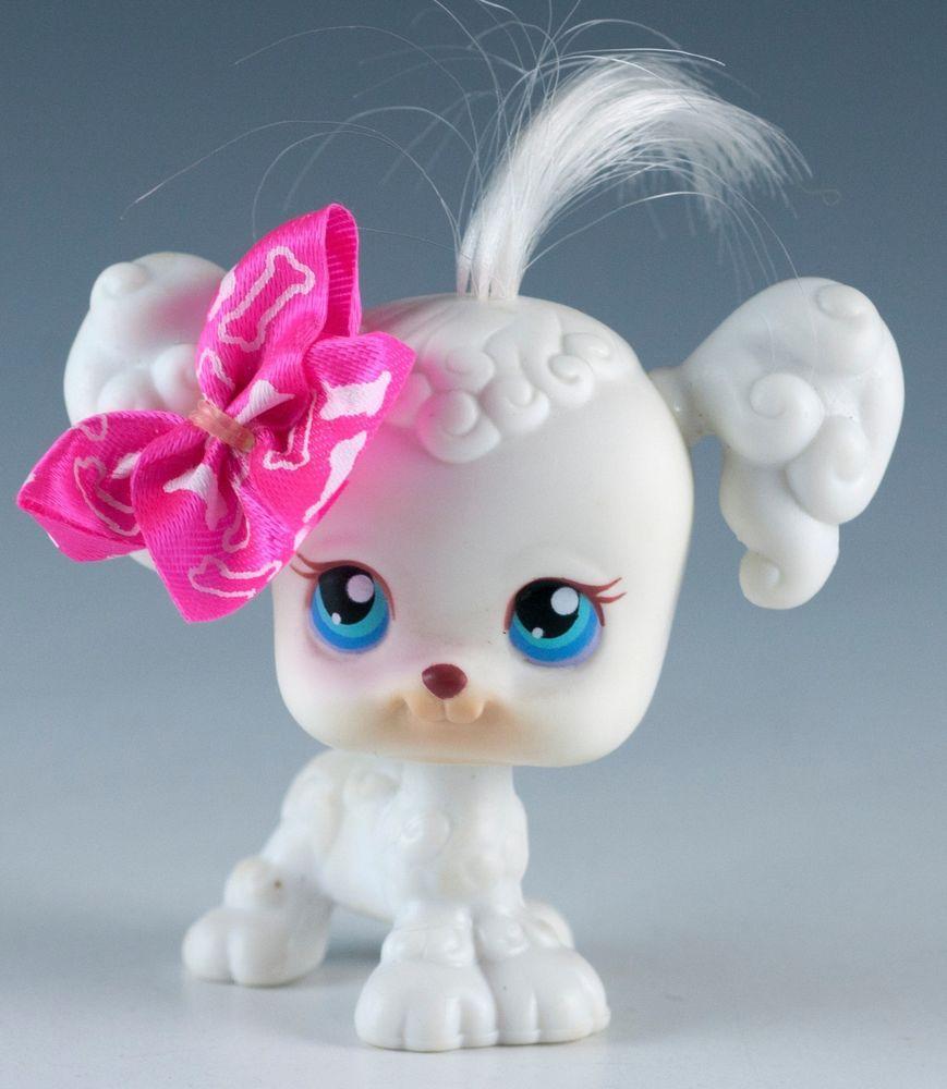 17 White With Blue Eyes Littlest Pet Shop Poodle Pet Shop