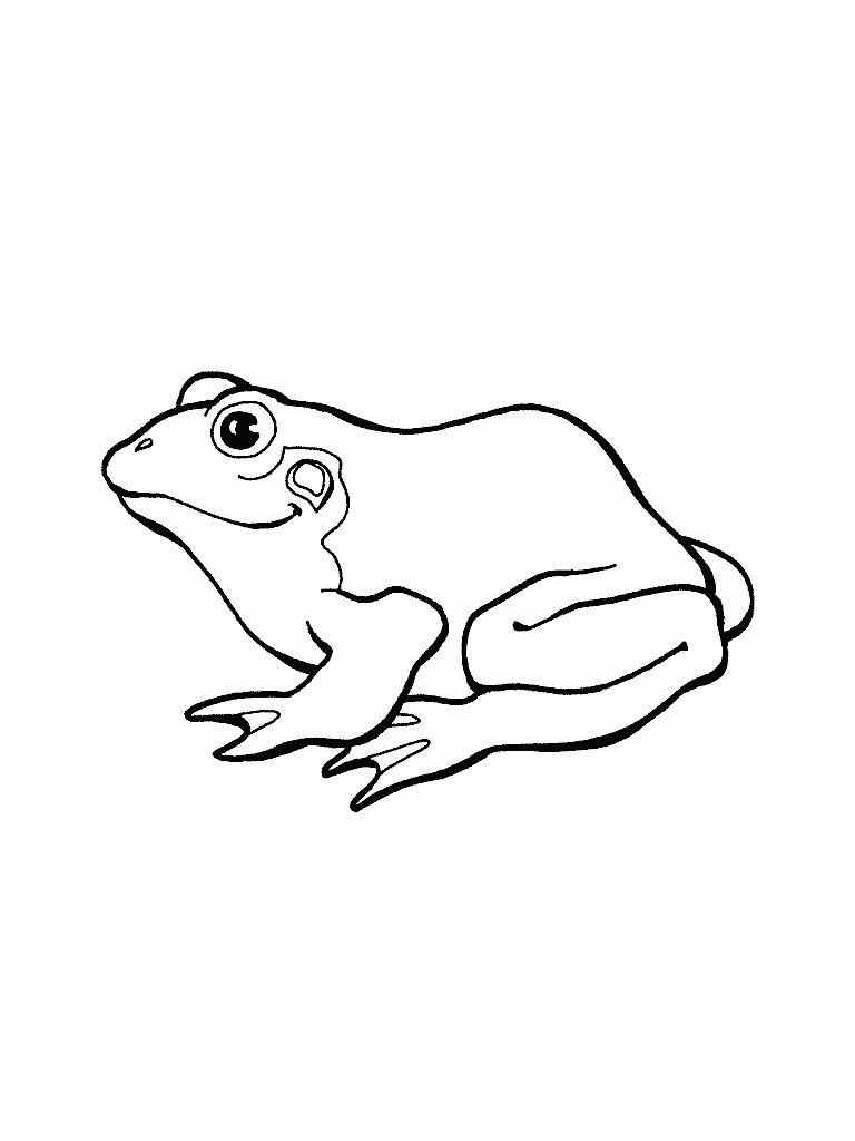Tree Frog Coloring Page New Free Printable Frog Coloring Pages For