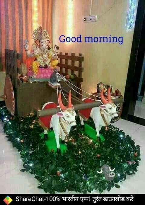 Pin by Radhika Shekhawat on Good Morning &Good Night