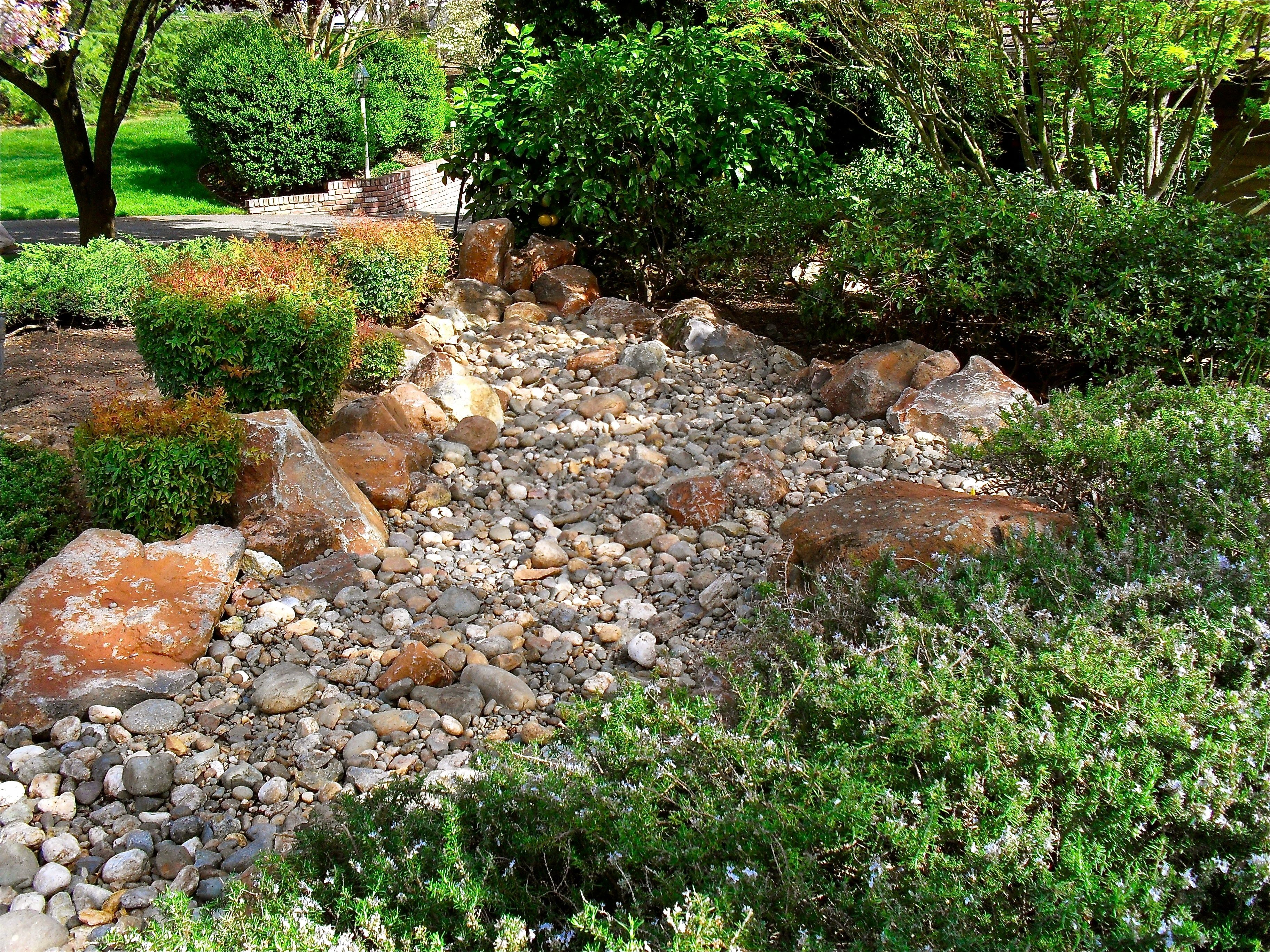 Amazing Water Garden | Rock Gardens And Water Features   Alpine Gardens | San Diego  Landscape