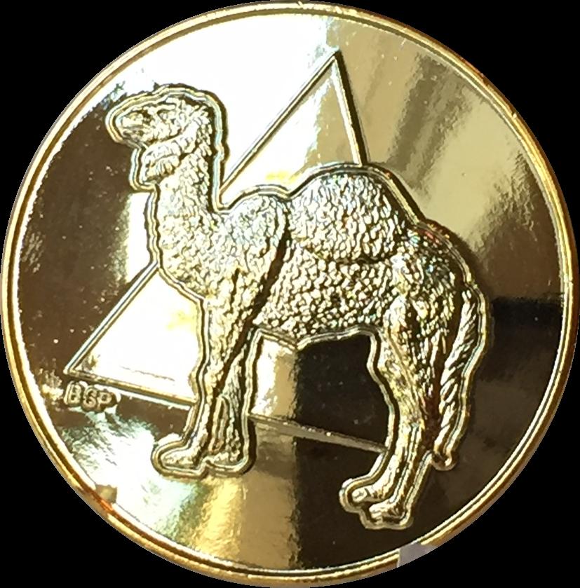 Camel Antique Bronze AA coin recovery token medallion chip