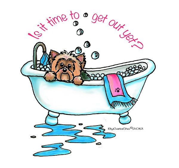 Yorkie Print Featuring The Mixed Media Bath Time By Catia Cho
