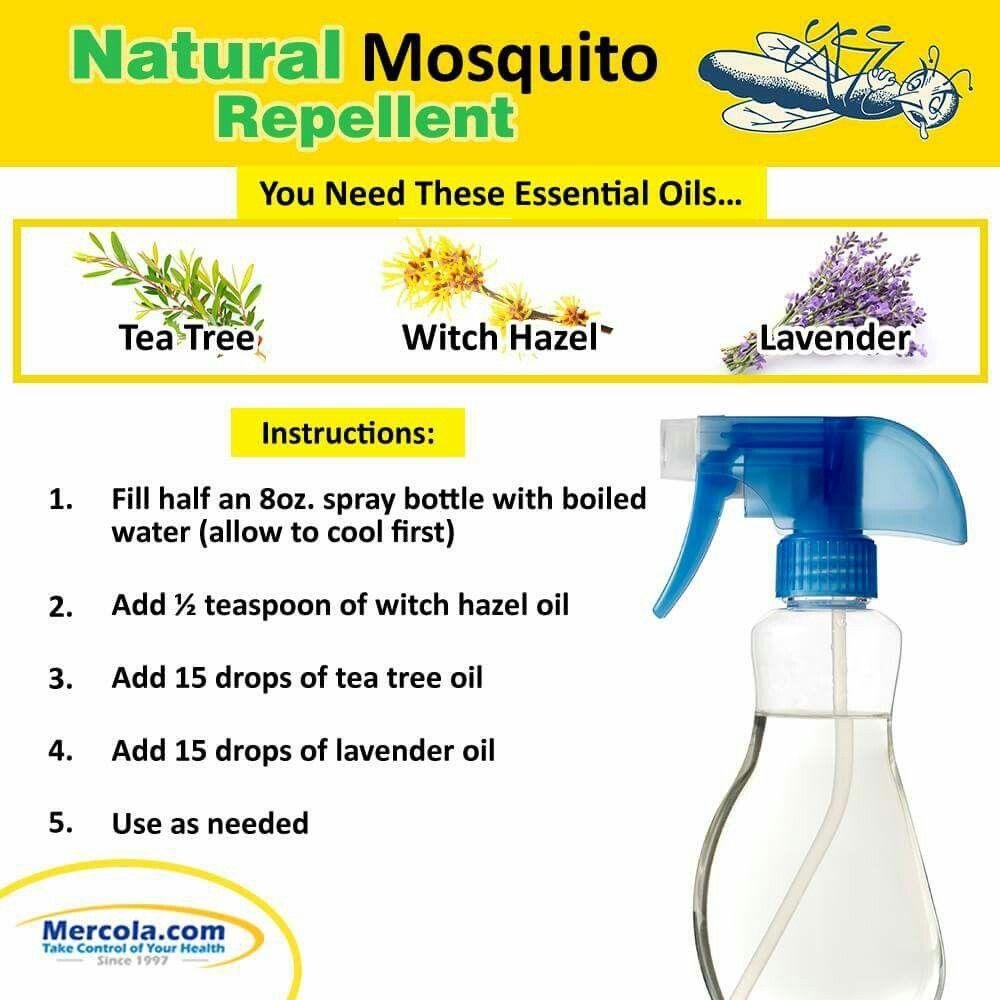 Diy mosquito repellant natural mosquito repellant