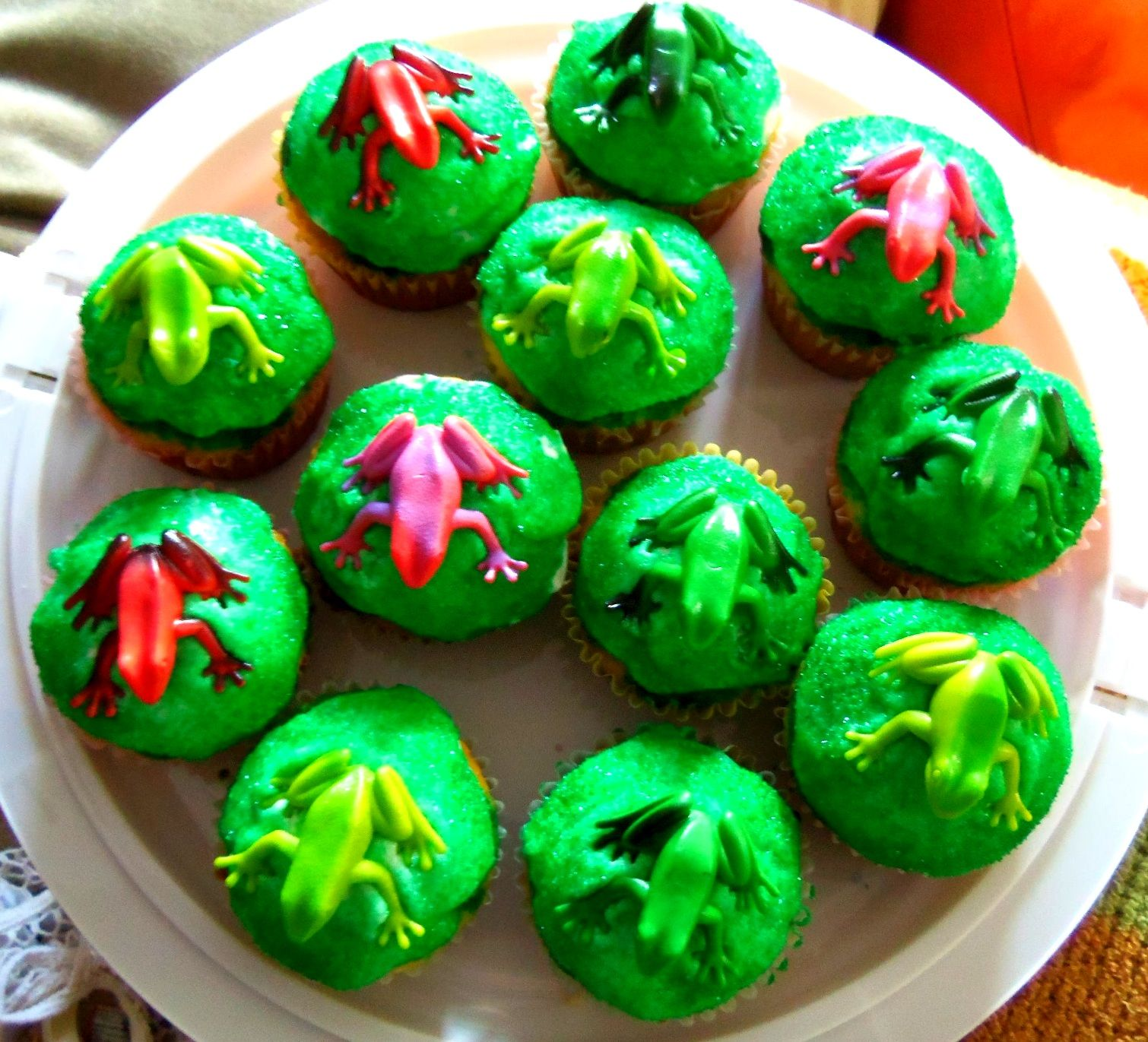 Rainforest Cupcakes- cupcakes with white frosting, lightly rolled in ...