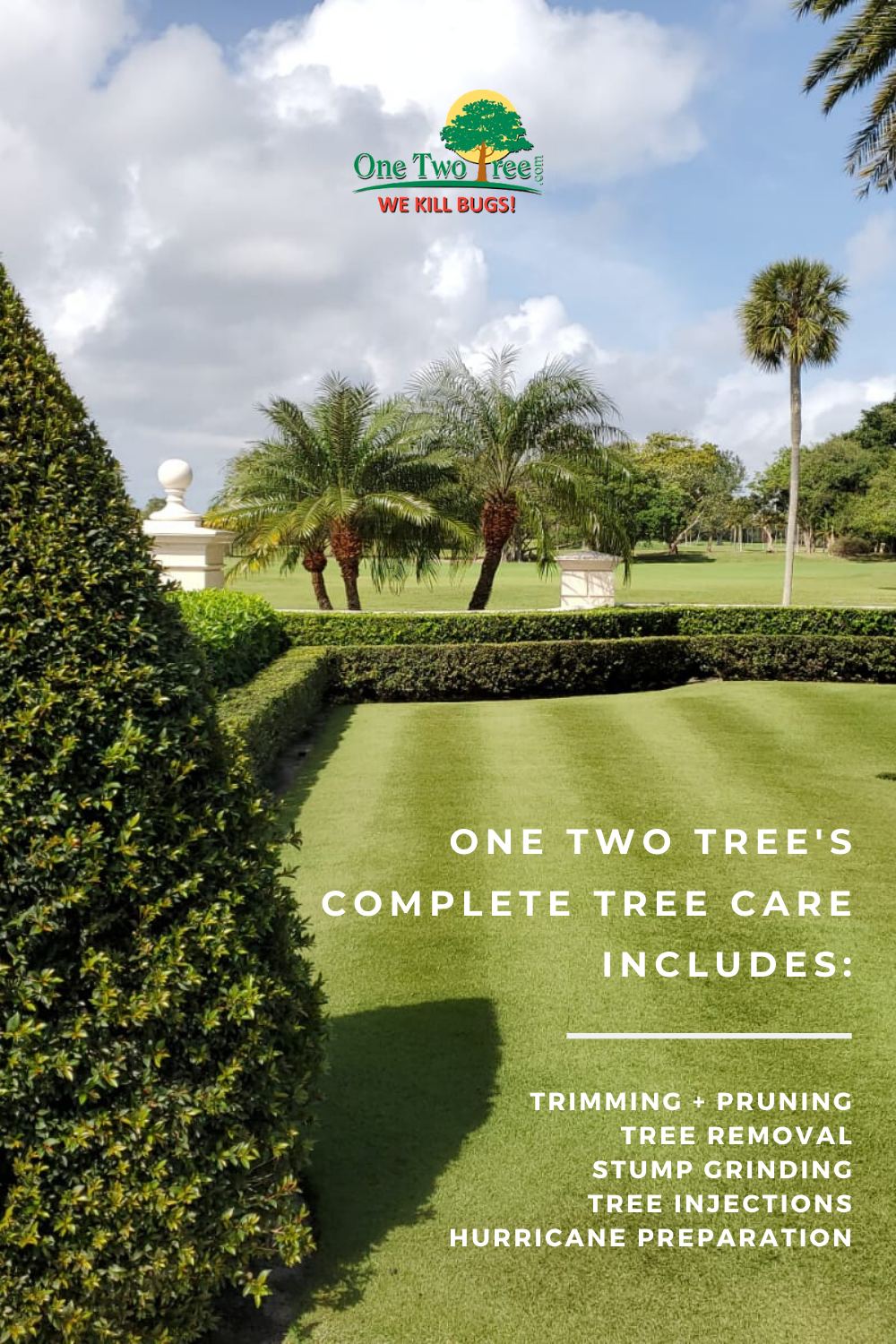 One Two Tree Complete Tree Care In 2020 Tree Care Tree Service Two Trees