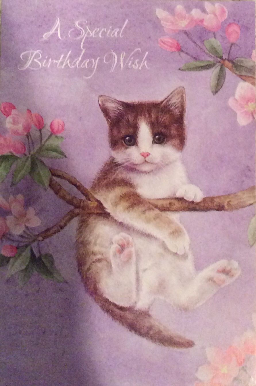 Pin By Grammie Newman On Birthday Pinterest Happy Birthday And