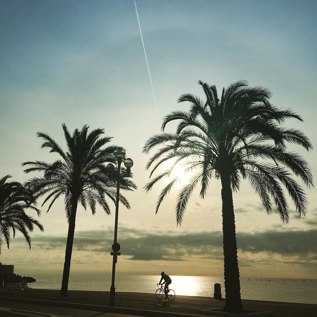 Beautiful view of the beach  #nice  #nicecity #frenchriviera #cotedazur #winter #winterwanderer #sunnyday by c4romolina at http://ift.tt/1Ho4h9g
