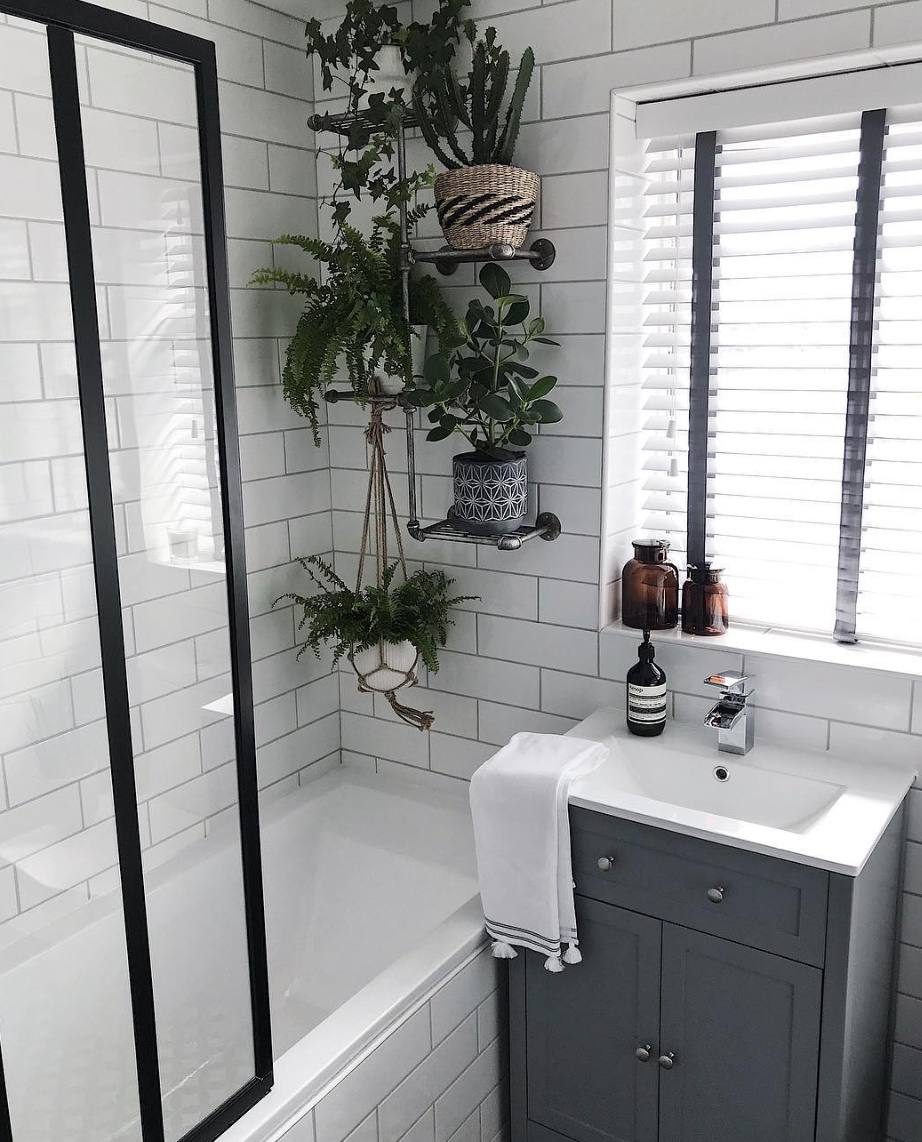 Photo of 17 Bathroom Plants That Were Styled Perfectly