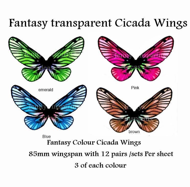 OOAK Fantasy  Cicada  wings transparency sheet 12 pairs for only 2 euro