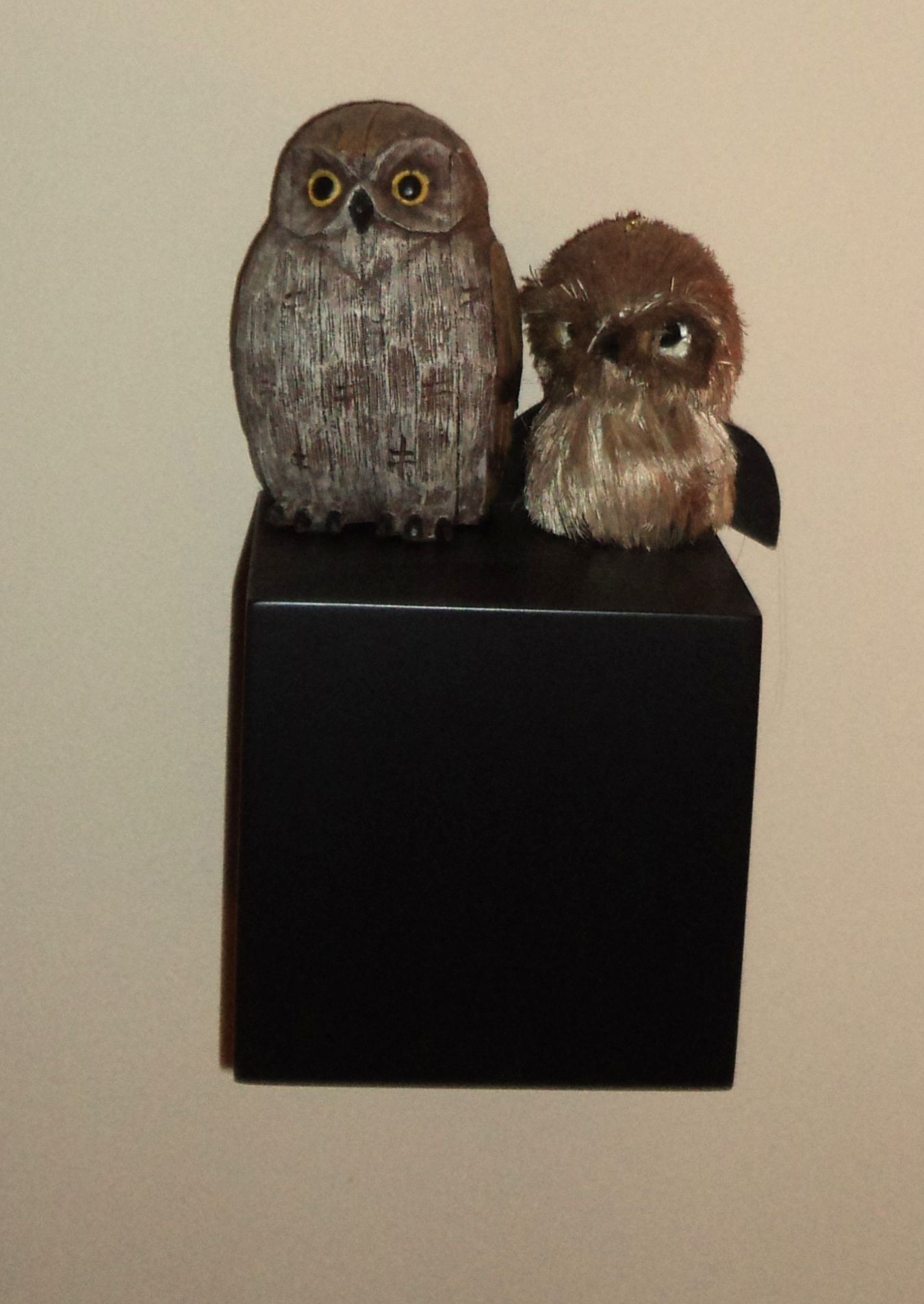 my own owls in my living room..they need a new one.
