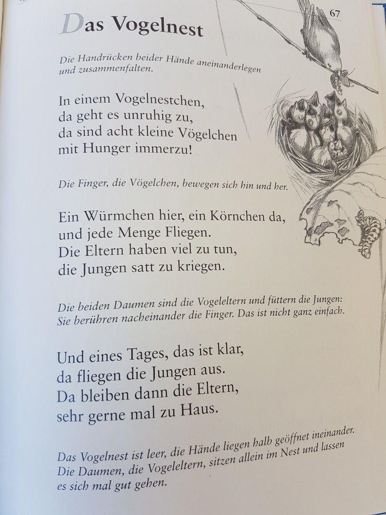 Das Vogelnest Fingerspiel Krippe Kita Kindergarten Kind Reim