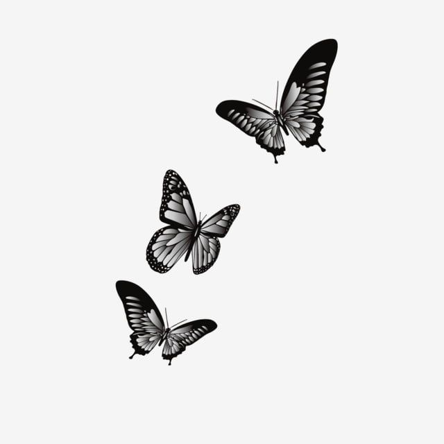 Cartoon Type Art Black And White Gradient Color Butterfly Flying In The Air Butterfly Dancing Butterfly Insect Png And Vector With Transparent Background For Butterfly Tattoos On Arm Discreet Tattoos Cute