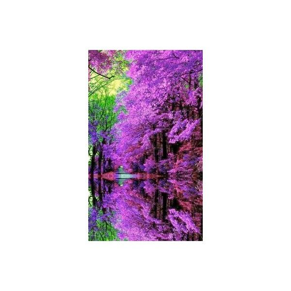 The World's Most Beautiful Botanical Gardens in Japan ❤ liked on Polyvore featuring home, outdoors, outdoor decor, garden decor, garden patio decor and outdoor garden decor